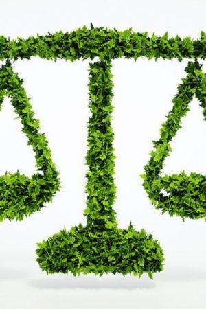 Derecho Ambiental, Aguas y Minero