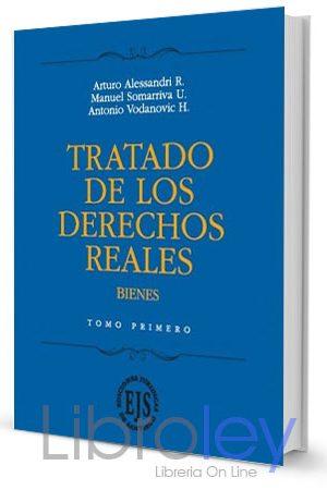 Tratado de los Derechos Reales, Bienes